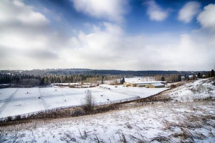 鄰近加拿大卡爾加里約160英畝的物業