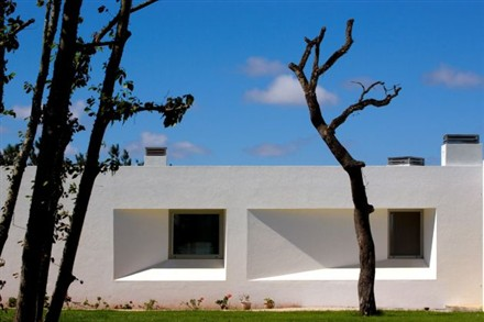 Y House by SousaSantos Architects