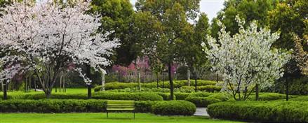 四季雅苑园林景致