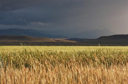 Broken O Ranch Montana