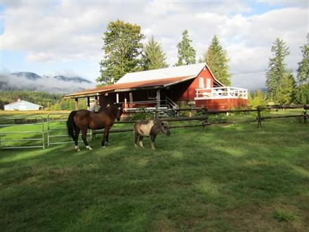英属哥伦比亚的牧场